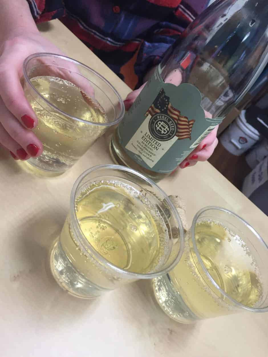 Rebel Seed Cider Glasses