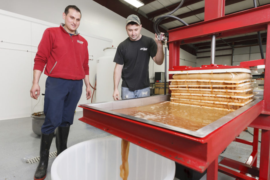 Miguel Galarraga and Seth Hart pressing apples at New England Cider Company