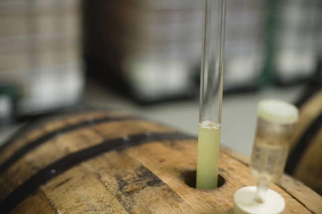 Cider Making