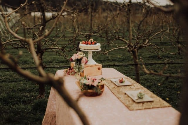 Cidery Weddings