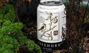 craft cider with herbs