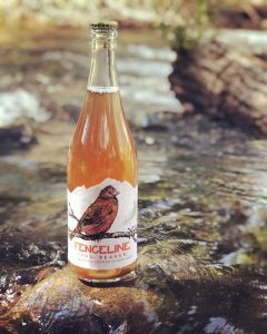 Fenceline Cider