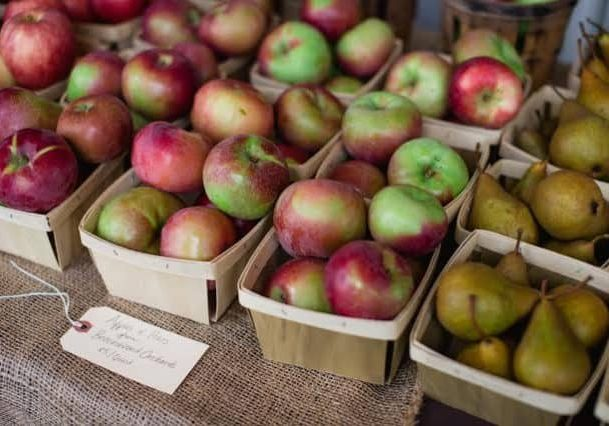Credit: Alexandra Whitney Photography Tags: Apples, Cider