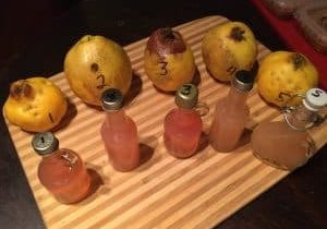 266: Vermont Quince Co. Elevates a Forgotten Pomme