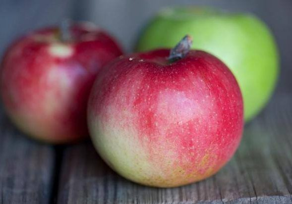 Weavers-Orchard-Apples-4
